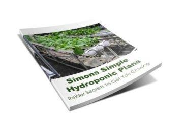 Hydroponic Plans