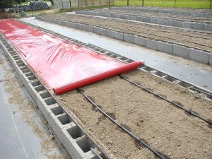 Red Plastic Mulch with Drip Irrigation