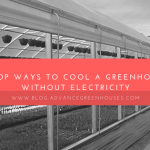 7 Top Ways to Cool A Greenhouse without Electricity