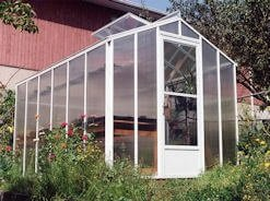 Greenhouse with open roof vent