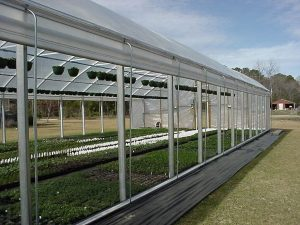 greenhouse roll up side curtains