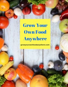 Grow Your Own Food Anywhere