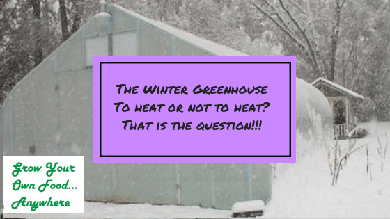 Should you heat your greenhouse in the winter?