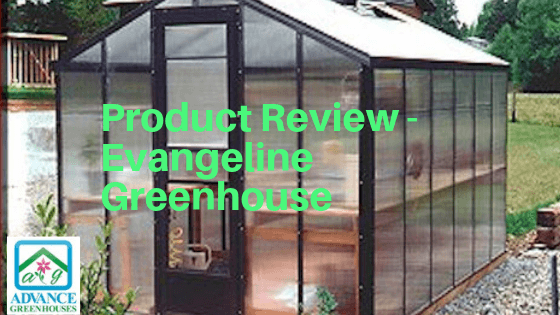 Polycarbonate Greenhouse review