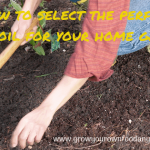 Choosing Topsoil for Your Home Garden