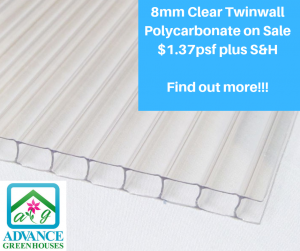 8mm clear twinwall polycarbonate