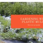 Plastic Garden Mulch